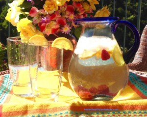 HHW-Fruit Water Pitcher
