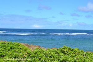 HHW-Ocean View